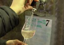 vin-bio-en-provence